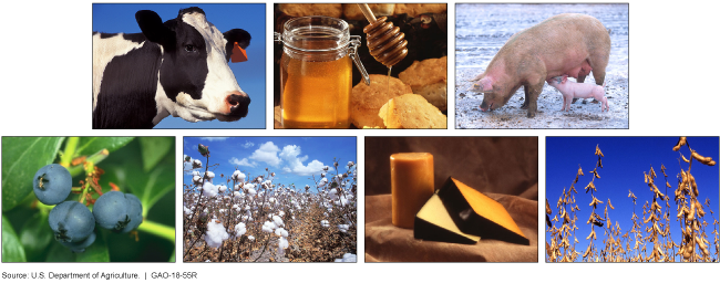 Photo collage of a cow, honey, pig, blueberries, cotton, cheese and soybeans.