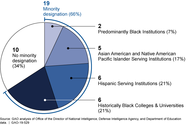 Pie chart showing 34% no minority designation; 66% minority designation; and the breakdown of the minority designation by type.
