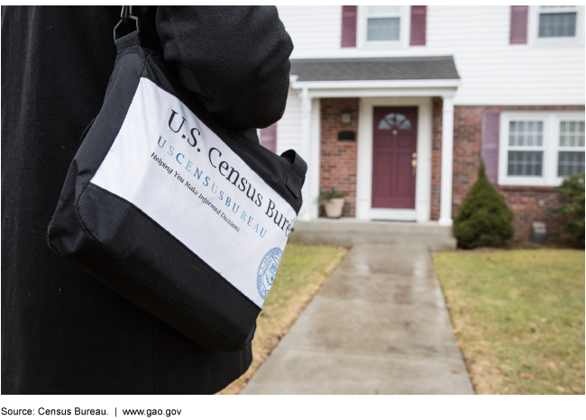 A person carrying a U.S. Census Bureau tote bag with the front door of a house in the background.