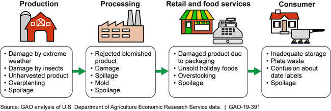 Food Supply-Chain Stages and Examples of Causes of Food Loss and Waste